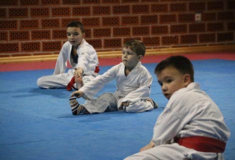 Mladi karatisti na treningu savladavali poligon i ponavljali osnove